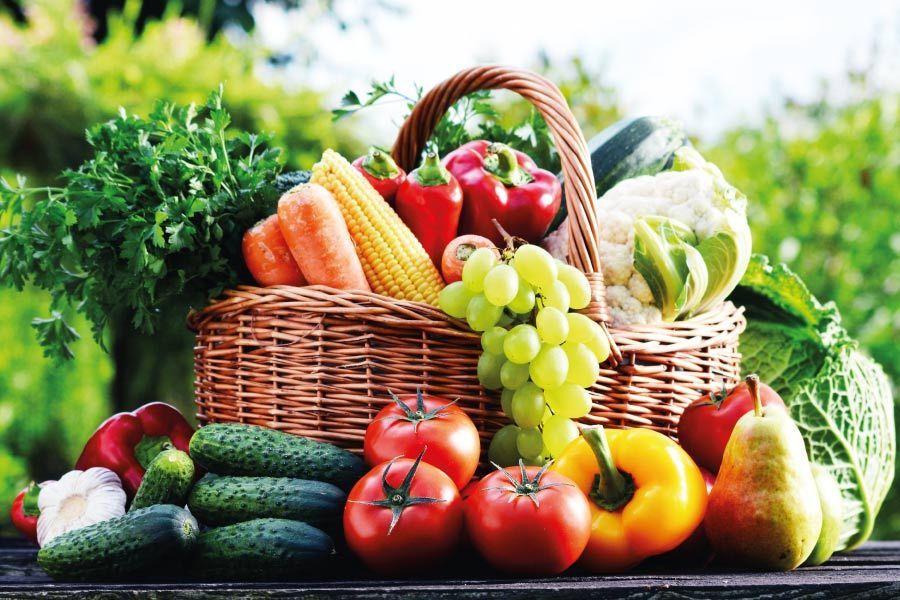 Tot sobre la Dieta Mediterrània