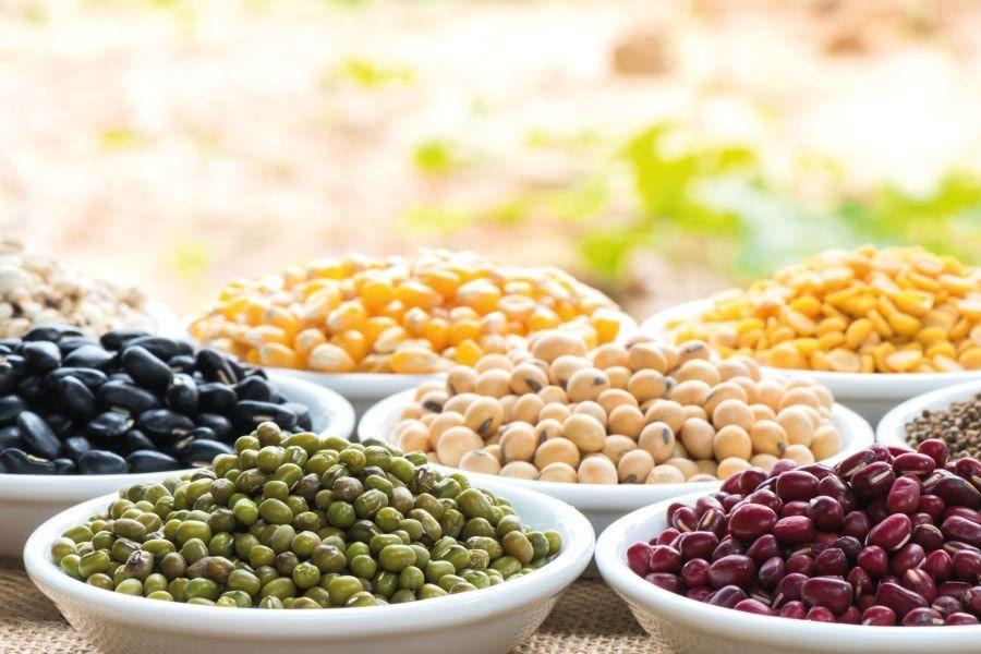 Mites i realitats sobre la proteïna vegetal