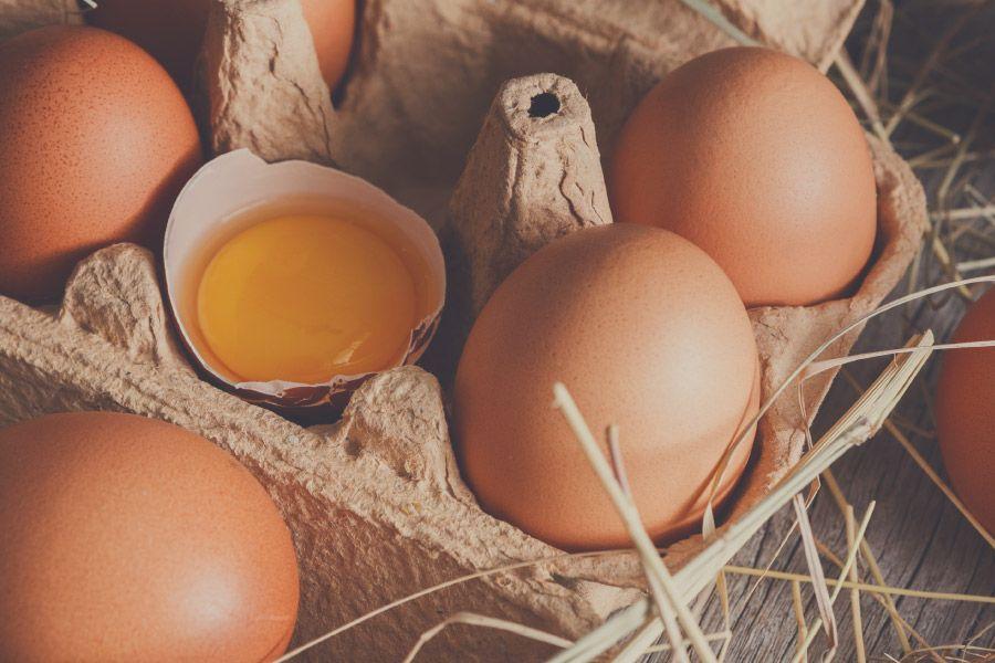 Descobreix les propietats nutricionals de l'ou